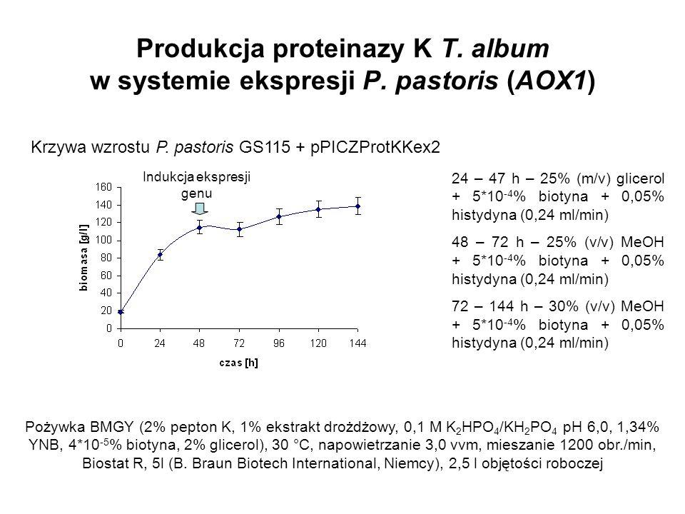 Produkcja proteinazy K T. album w systemie ekspresji P. pastoris (AOX1) Indukcja ekspresji genu Krzywa wzrostu P. pastoris GS115 + pPICZProtKKex2 24 –