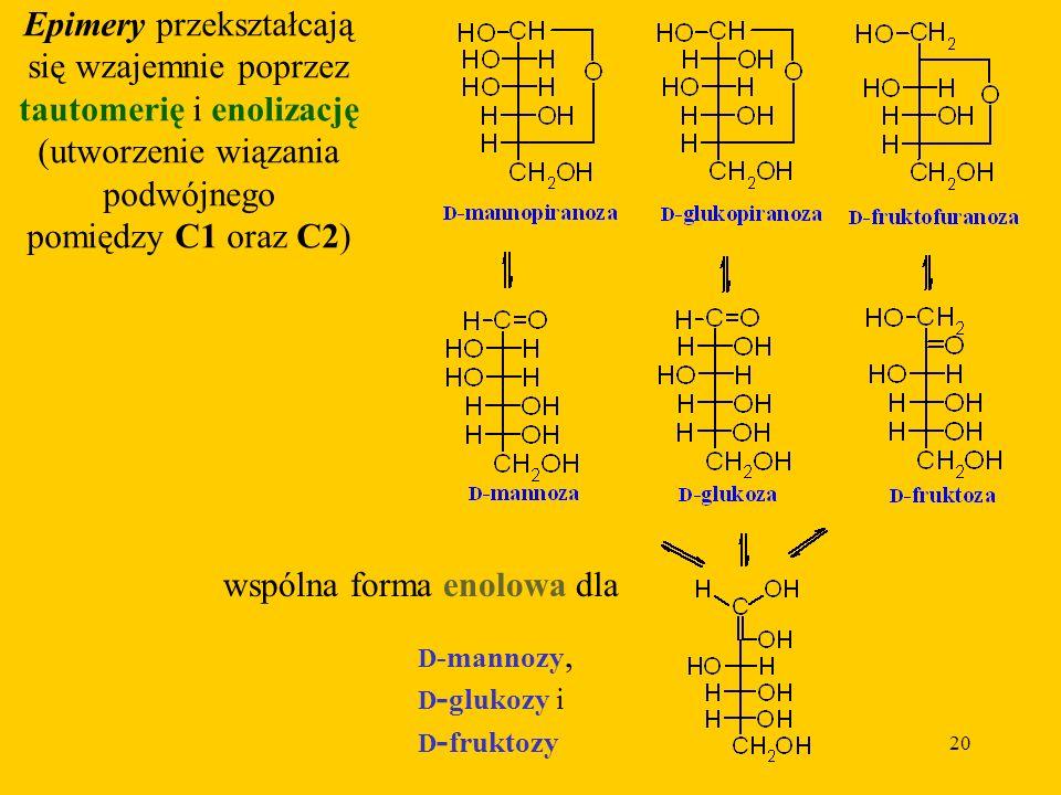 20 Epimery przekształcają się wzajemnie poprzez tautomerię i enolizację (utworzenie wiązania podwójnego pomiędzy C1 oraz C2) wspólna forma enolowa dla D -mannozy, D - glukozy i D - fruktozy