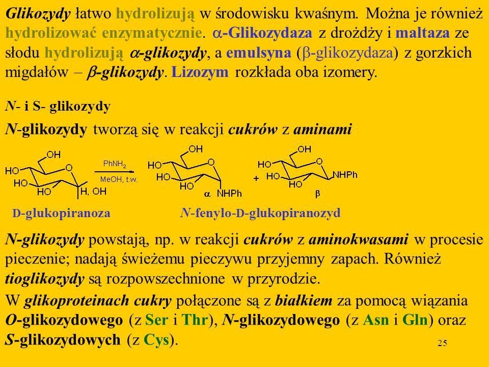 25 Glikozydy łatwo hydrolizują w środowisku kwaśnym.
