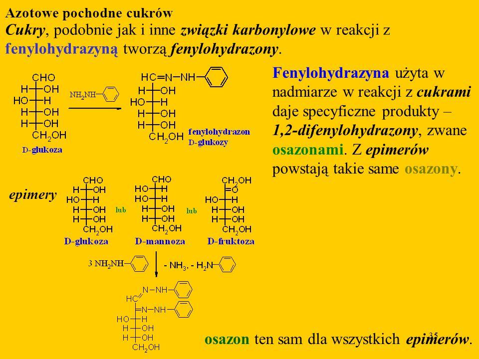 35 Azotowe pochodne cukrów Cukry, podobnie jak i inne związki karbonylowe w reakcji z fenylohydrazyną tworzą fenylohydrazony.