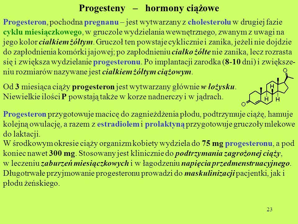 23 Progesteny – hormony ciążowe Progesteron, pochodna pregnanu – jest wytwarzany z cholesterolu w drugiej fazie cyklu miesiączkowego, w gruczole wydzi