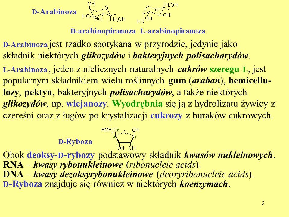 4 Do najbardziej rozpowszechnionych spośród 16 aldoheksoz i 8 ketoheksoz należą: D -glukoza, D -mannoza, D -galaktoza i D -fruktoza.