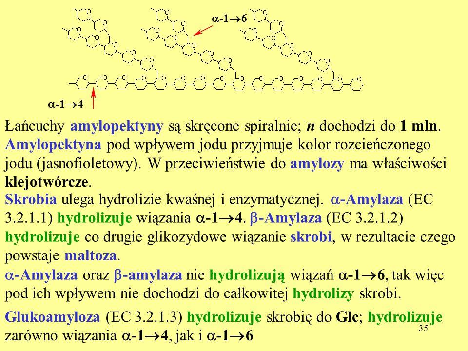 36 Inne polisacharydy Pektyny – łatwo żelujące polisacharydy występujące w owocach, np.