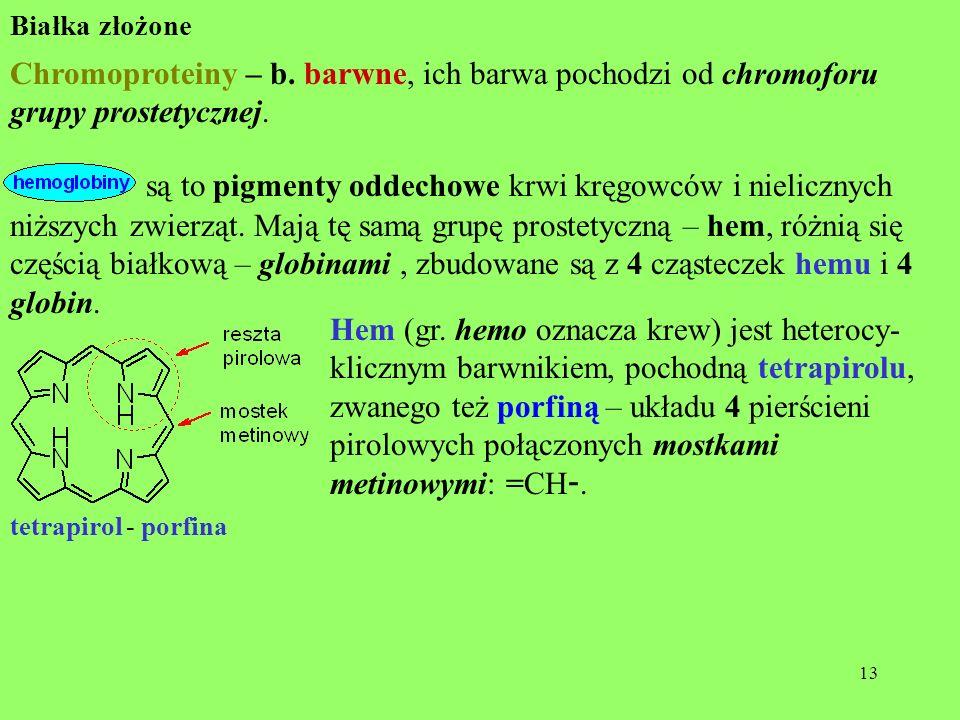 13 Białka złożone Chromoproteiny – b. barwne, ich barwa pochodzi od chromoforu grupy prostetycznej. są to pigmenty oddechowe krwi kręgowców i nieliczn
