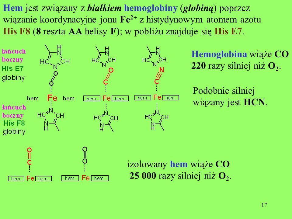 17 Hem jest związany z białkiem hemoglobiny (globiną) poprzez wiązanie koordynacyjne jonu Fe 2+ z histydynowym atomem azotu His F8 (8 reszta AA helisy