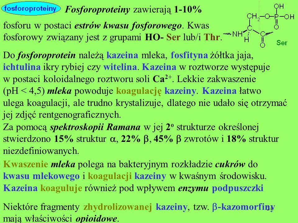 24 fosforu w postaci estrów kwasu fosforowego. Kwas fosforowy związany jest z grupami HO- Ser lub/i Thr. Fosforoproteiny zawierają 1-10% Do fosforopro