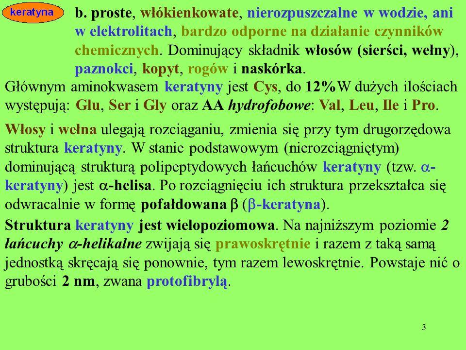 24 fosforu w postaci estrów kwasu fosforowego.