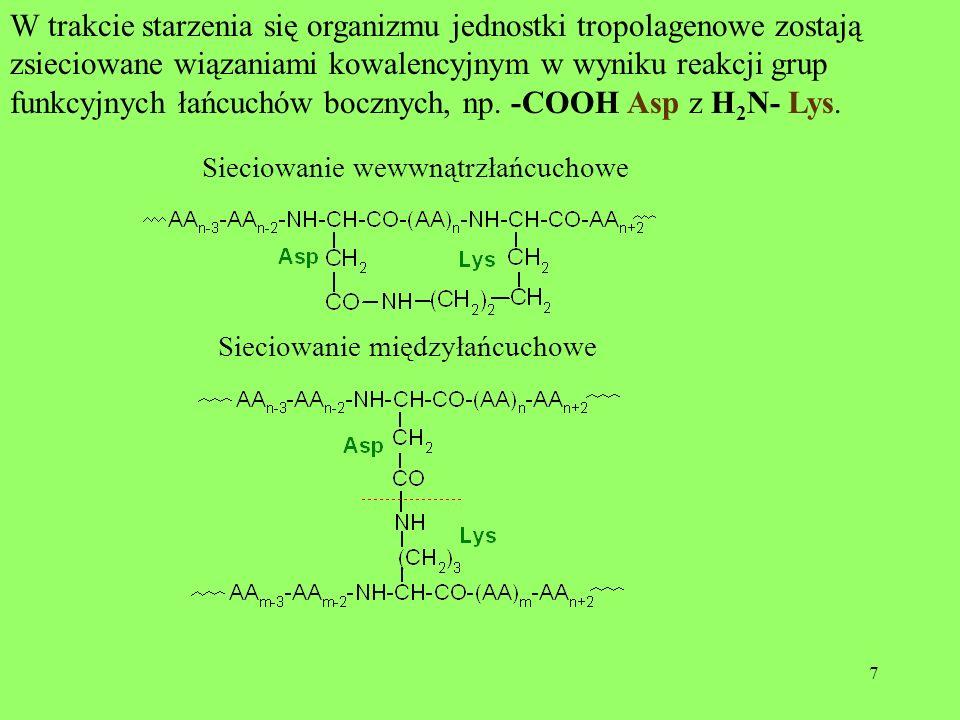 7 W trakcie starzenia się organizmu jednostki tropolagenowe zostają zsieciowane wiązaniami kowalencyjnym w wyniku reakcji grup funkcyjnych łańcuchów b