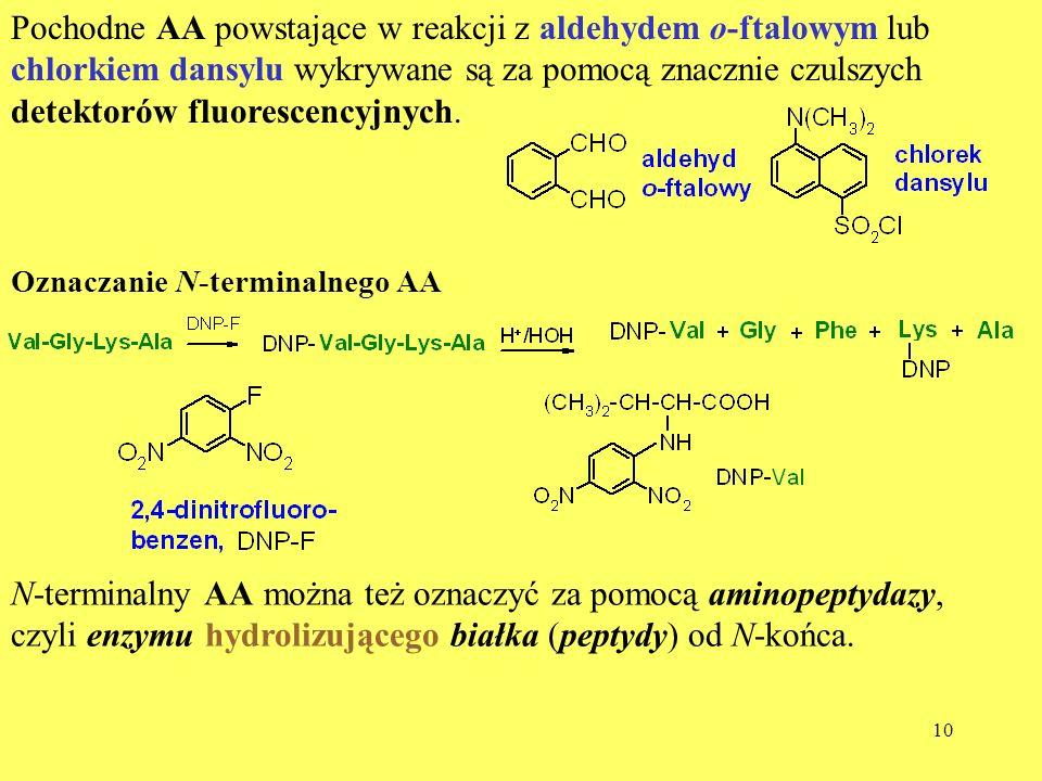 10 Pochodne AA powstające w reakcji z aldehydem o-ftalowym lub chlorkiem dansylu wykrywane są za pomocą znacznie czulszych detektorów fluorescencyjnyc