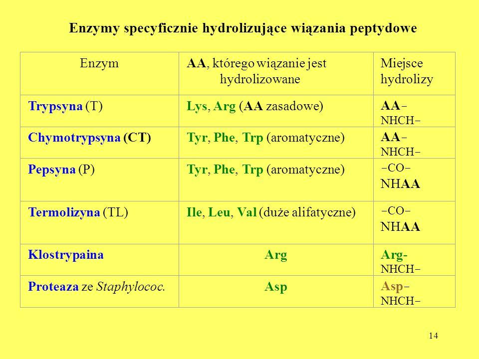 14 Enzymy specyficznie hydrolizujące wiązania peptydowe EnzymAA, którego wiązanie jest hydrolizowane Miejsce hydrolizy Trypsyna (T)Lys, Arg (AA zasado