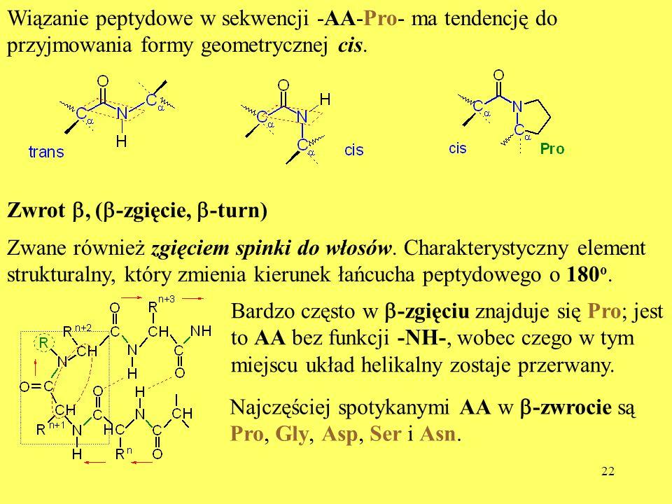 22 Wiązanie peptydowe w sekwencji -AA-Pro- ma tendencję do przyjmowania formy geometrycznej cis. Zwrot, ( -zgięcie, -turn) Zwane również zgięciem spin