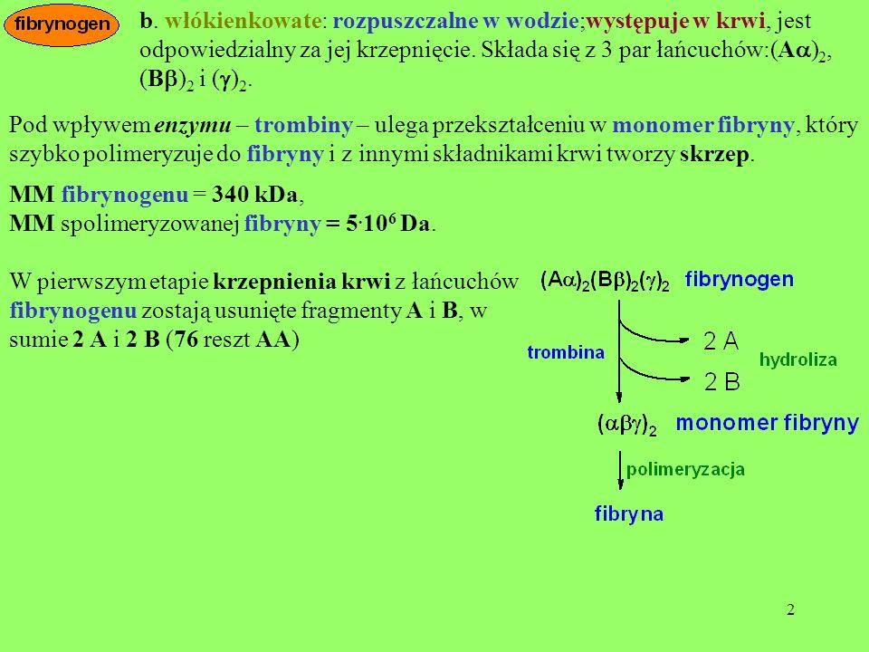 2 b. włókienkowate: rozpuszczalne w wodzie;występuje w krwi, jest odpowiedzialny za jej krzepnięcie. Składa się z 3 par łańcuchów:(A ) 2, (B ) 2 i ( )