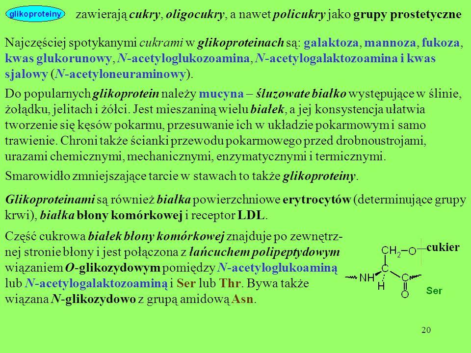 20 zawierają cukry, oligocukry, a nawet policukry jako grupy prostetyczne Do popularnych glikoprotein należy mucyna – śluzowate białko występujące w ś