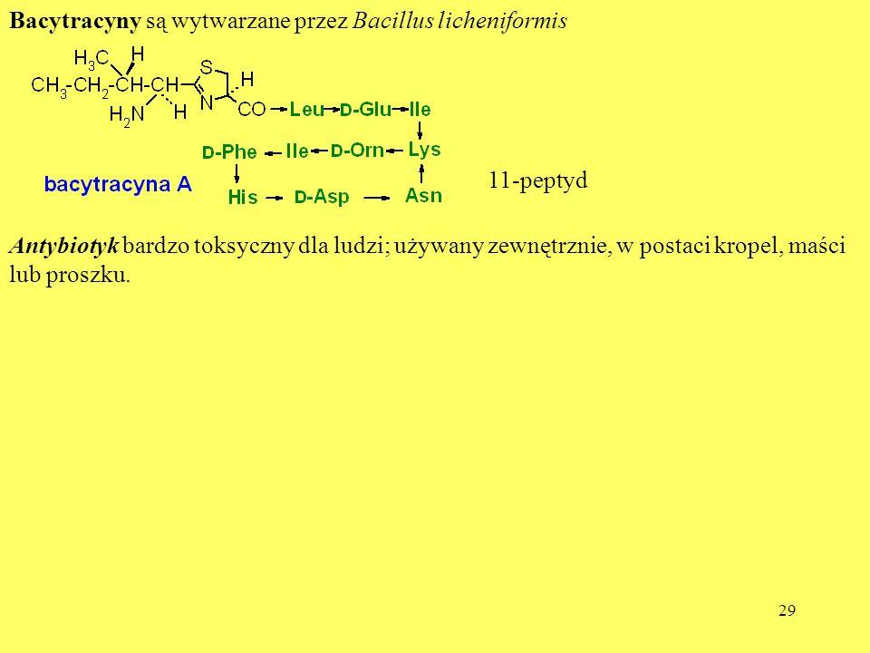 29 Bacytracyny są wytwarzane przez Bacillus licheniformis 11-peptyd Antybiotyk bardzo toksyczny dla ludzi; używany zewnętrznie, w postaci kropel, maśc