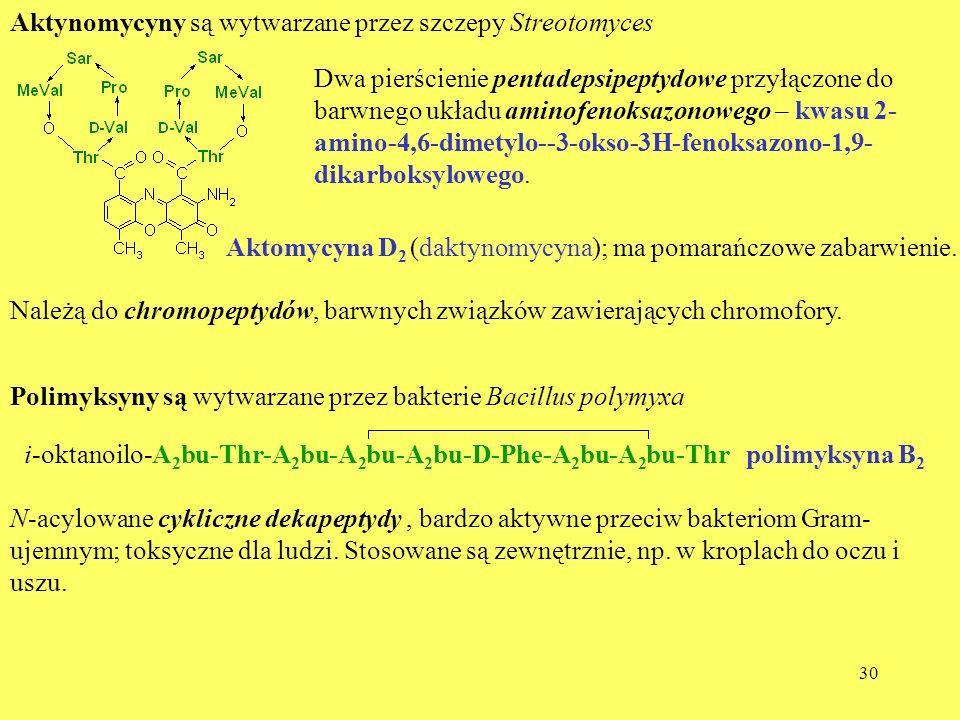 30 Aktynomycyny są wytwarzane przez szczepy Streotomyces Dwa pierścienie pentadepsipeptydowe przyłączone do barwnego układu aminofenoksazonowego – kwa