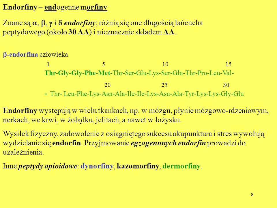 8 Endorfiny – endogenne morfiny Znane są,, i endorfiny; różnią się one długością łańcucha peptydowego (około 30 AA) i nieznacznie składem AA. -endorfi