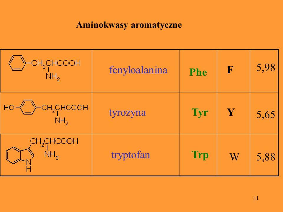 11 Aminokwasy aromatyczne fenyloalanina Phe F 5,98 tyrozynaTyrY 5,65 tryptofanTrp W5,88