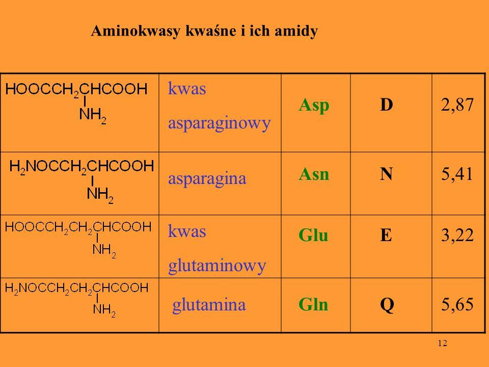 12 Aminokwasy kwaśne i ich amidy kwas asparaginowy AspD2,87 asparagina AsnN5,41 glutaminaGlnQ5,65 kwas glutaminowy GluE3,22