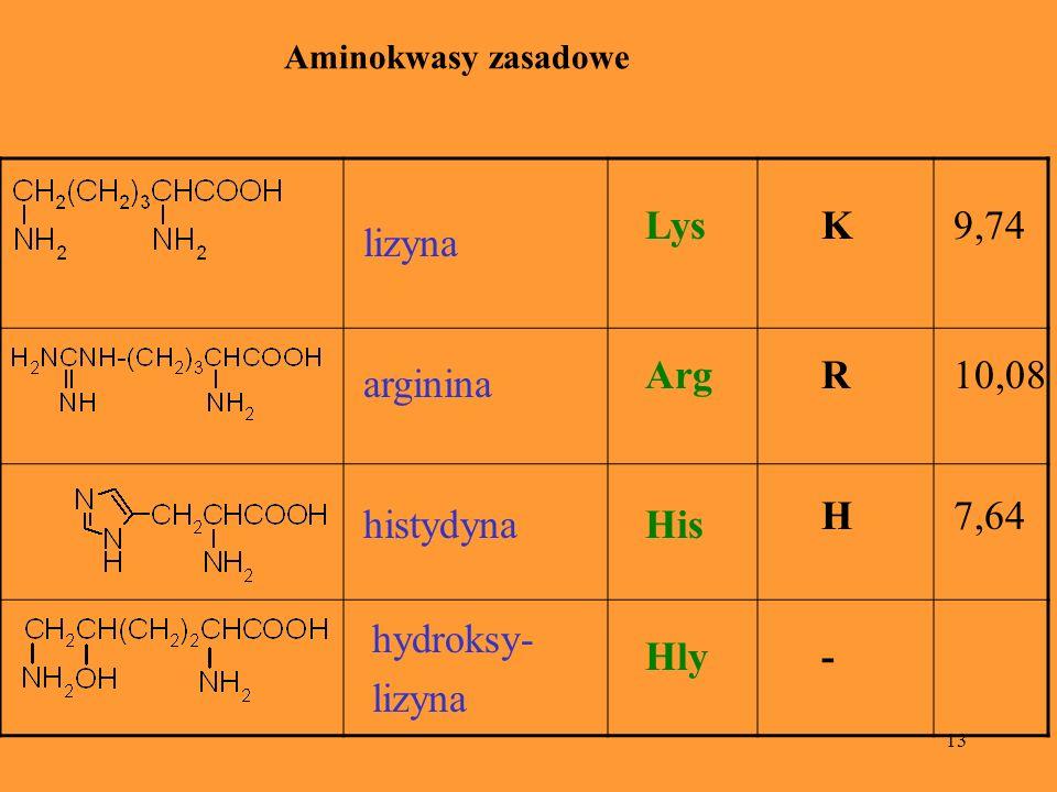 13 lizyna LysK9,74 arginina ArgR10,08 hydroksy- lizyna Hly- histydynaHis H7,64 Aminokwasy zasadowe