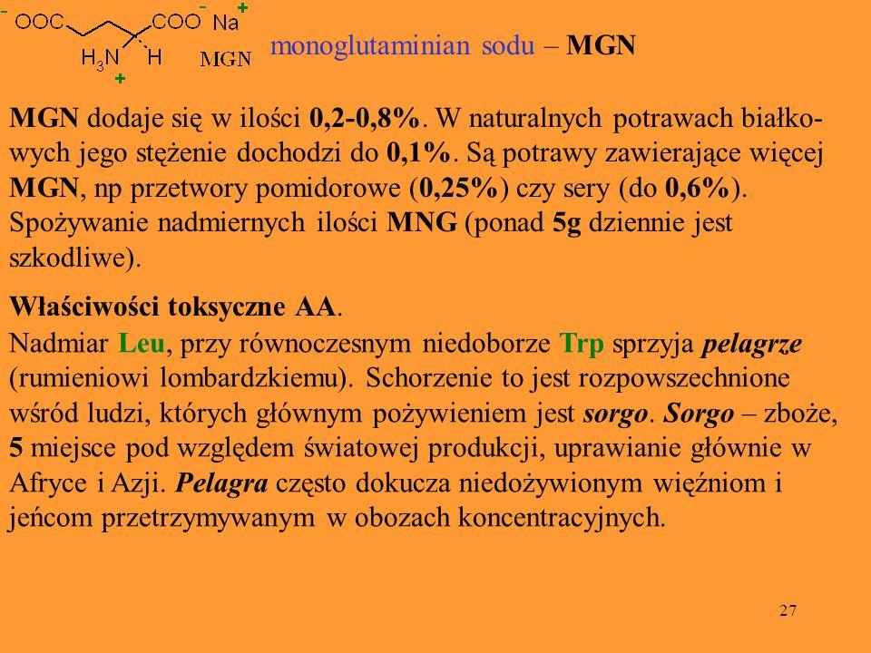 27 MGN dodaje się w ilości 0,2-0,8%. W naturalnych potrawach białko- wych jego stężenie dochodzi do 0,1%. Są potrawy zawierające więcej MGN, np przetw