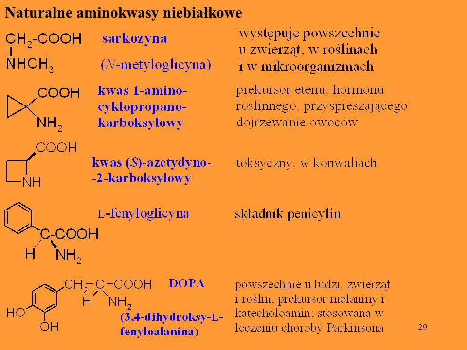 29 Naturalne aminokwasy niebiałkowe