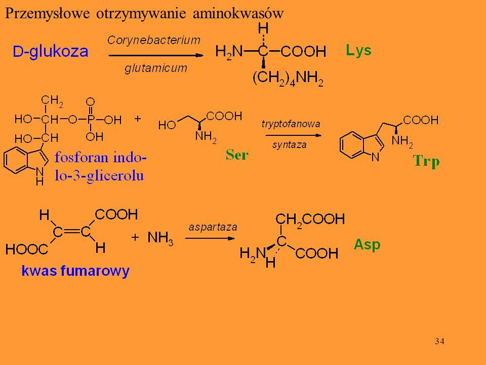 34 Przemysłowe otrzymywanie aminokwasów
