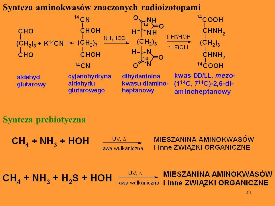 41 Synteza aminokwasów znaczonych radioizotopami Synteza prebiotyczna