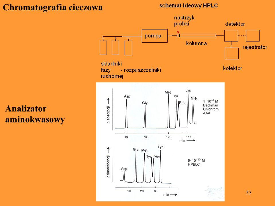 53 Chromatografia cieczowa Analizator aminokwasowy