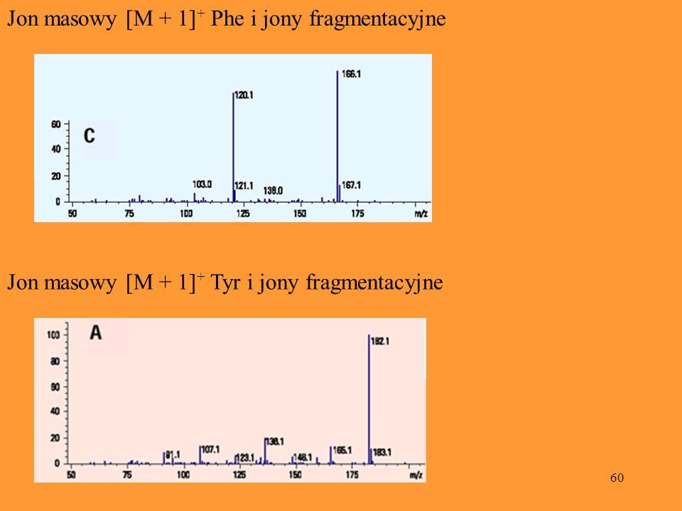 60 Jon masowy [M + 1] + Phe i jony fragmentacyjne Jon masowy [M + 1] + Tyr i jony fragmentacyjne
