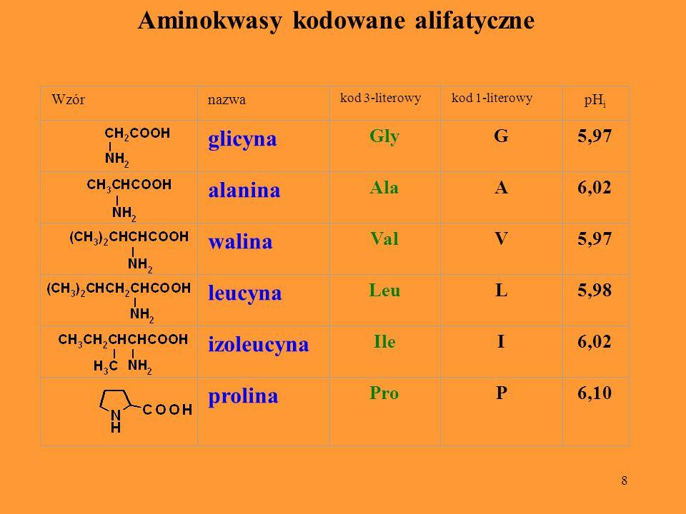 8 Aminokwasy kodowane alifatyczne Wzórnazwa kod 3-literowykod 1-literowy pH i glicyna GlyG5,97 alanina AlaA6,02 walina ValV5,97 leucyna LeuL5,98 izole