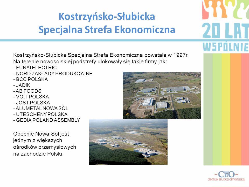 Kostrzyńsko-Słubicka Specjalna Strefa Ekonomiczna Kostrzyńsko-Słubicka Specjalna Strefa Ekonomiczna powstała w 1997r. Na terenie nowosolskiej podstref