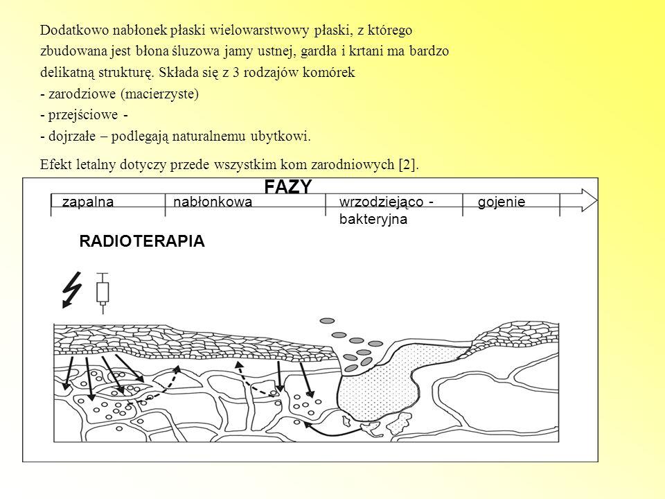 Bibliografia 1.A.Wygoda, K. Składowski.