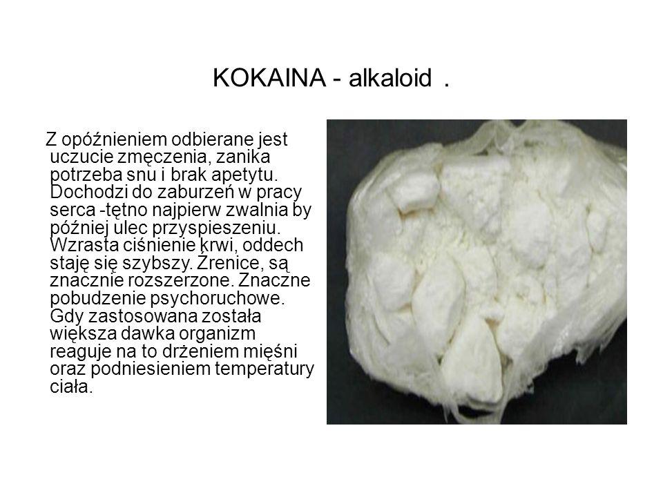 KOKAINA - alkaloid. Z opóźnieniem odbierane jest uczucie zmęczenia, zanika potrzeba snu i brak apetytu. Dochodzi do zaburzeń w pracy serca -tętno najp
