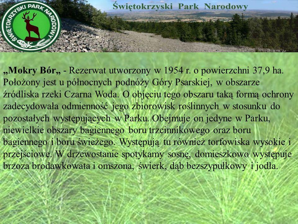 Mokry Bór - Rezerwat utworzony w 1954 r. o powierzchni 37,9 ha. Położony jest u północnych podnóży Góry Psarskiej, w obszarze źródliska rzeki Czarna W