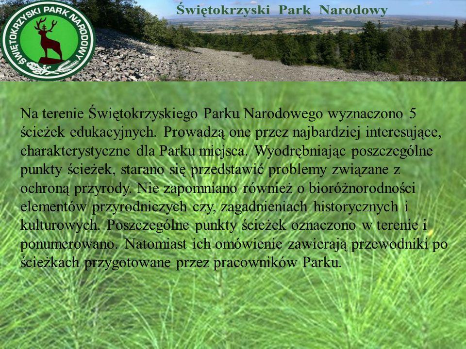 Na terenie Świętokrzyskiego Parku Narodowego wyznaczono 5 ścieżek edukacyjnych. Prowadzą one przez najbardziej interesujące, charakterystyczne dla Par