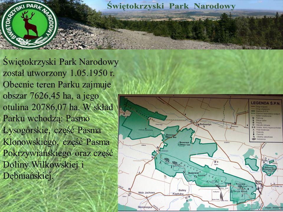 Świętokrzyski Park Narodowy został utworzony 1.05.1950 r. Obecnie teren Parku zajmuje obszar 7626,45 ha, a jego otulina 20786,07 ha. W skład Parku wch
