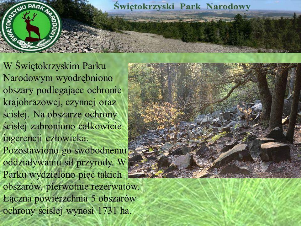 W Świętokrzyskim Parku Narodowym wyodrębniono obszary podlegające ochronie krajobrazowej, czynnej oraz ścisłej.