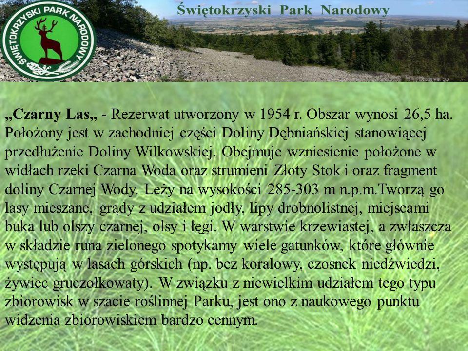 Czarny Las - Rezerwat utworzony w 1954 r. Obszar wynosi 26,5 ha. Położony jest w zachodniej części Doliny Dębniańskiej stanowiącej przedłużenie Doliny