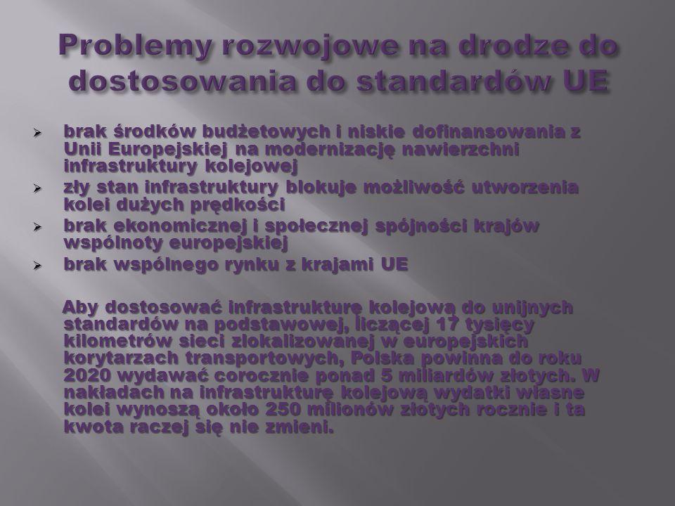 brak środków budżetowych i niskie dofinansowania z Unii Europejskiej na modernizację nawierzchni infrastruktury kolejowej brak środków budżetowych i n