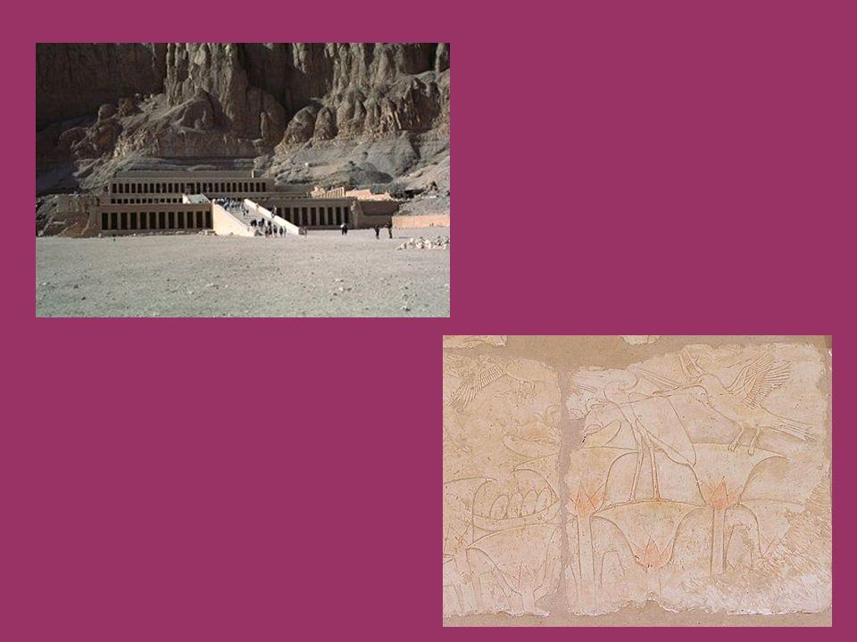 DRUGI TARAS na środkowym tarasie przedstawione są sceny z życia królowej, w tym wyprawa do Puntu po prawej stronie tarasu usytuowana jest kaplica Anubisa natomiast po lewej świątynia Hathor w kaplicy Hathor znajdują się tzw..