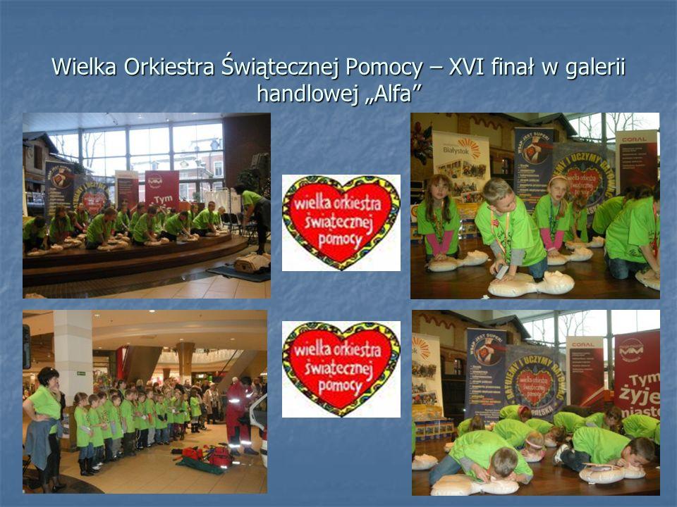 Wielka Orkiestra Świątecznej Pomocy – XVI finał w galerii handlowej Alfa