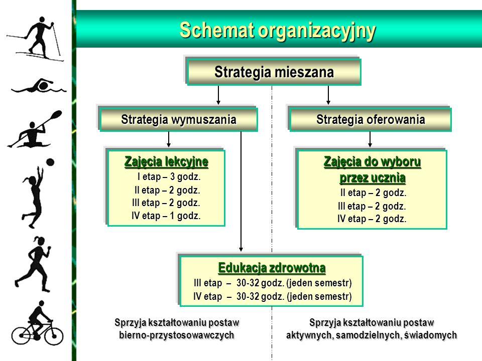 Strategia mieszana Strategia wymuszania Strategia oferowania Zajęcia lekcyjne I etap – 3 godz. II etap – 2 godz. III etap – 2 godz. IV etap – 1 godz.