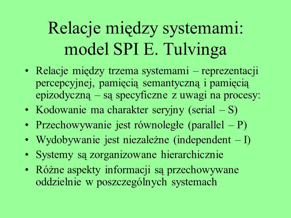 Typologia L. Squirea