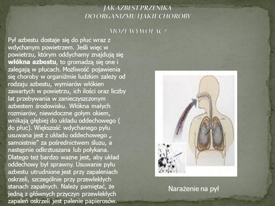 Pył azbestu dostaje się do płuc wraz z wdychanym powietrzem. Jeśli więc w powietrzu, którym oddychamy znajdują się włókna azbestu, to gromadzą się one