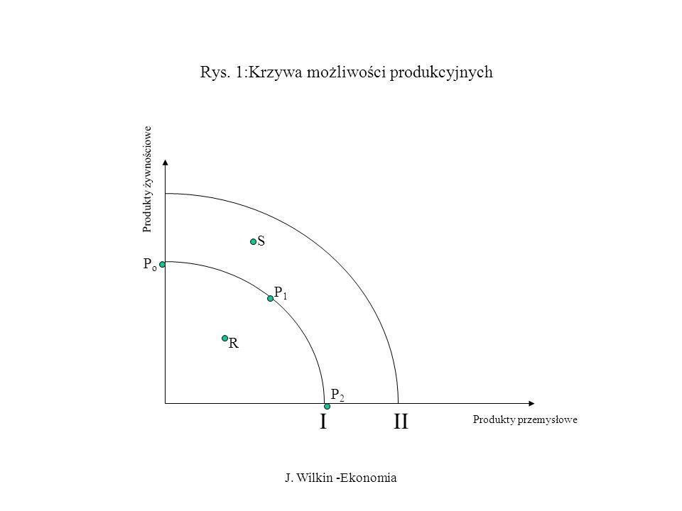 J.Wilkin -Ekonomia Rys.