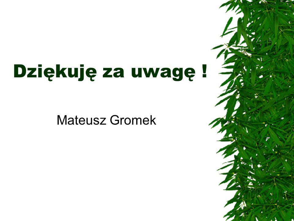 Dziękuję za uwagę ! Mateusz Gromek
