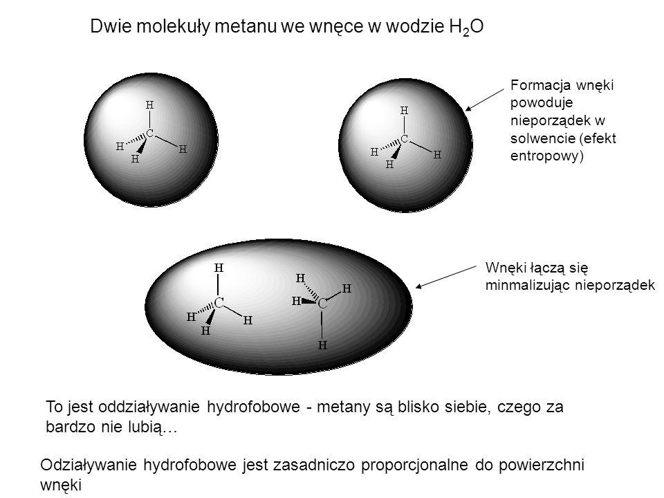 Dwie molekuły metanu we wnęce w wodzie H 2 O Formacja wnęki powoduje nieporządek w solwencie (efekt entropowy) Wnęki łączą się minmalizując nieporząde