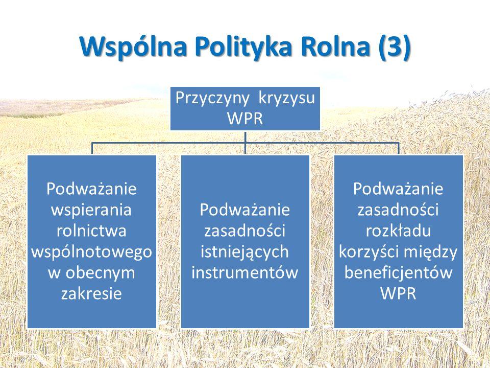 Wspólna Polityka Rolna (3) Przyczyny kryzysu WPR Podważanie wspierania rolnictwa wspólnotowego w obecnym zakresie Podważanie zasadności istniejących i