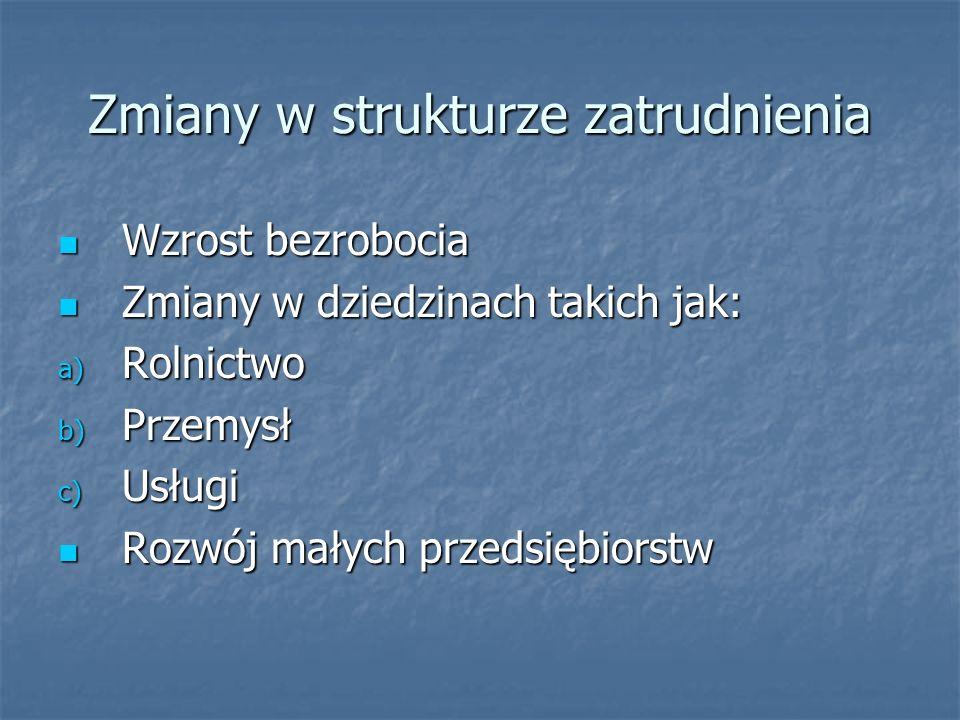 Imigracja zarobkowa do Czech Umowy o wzajemne zatrudnienie: Umowy o wzajemne zatrudnienie: Z krajami takimi jak Ukraina czy Wietnam dokładnie określa Z krajami takimi jak Ukraina czy Wietnam dokładnie określa się liczbę osób dopuszczanych na rynek; umowy wymiany się liczbę osób dopuszczanych na rynek; umowy wymiany stażystów, praktykantów; najwięcej zatrudnia się Słowaków stażystów, praktykantów; najwięcej zatrudnia się Słowaków Procedura przyznawania zgody na pracę: Procedura przyznawania zgody na pracę: 1.