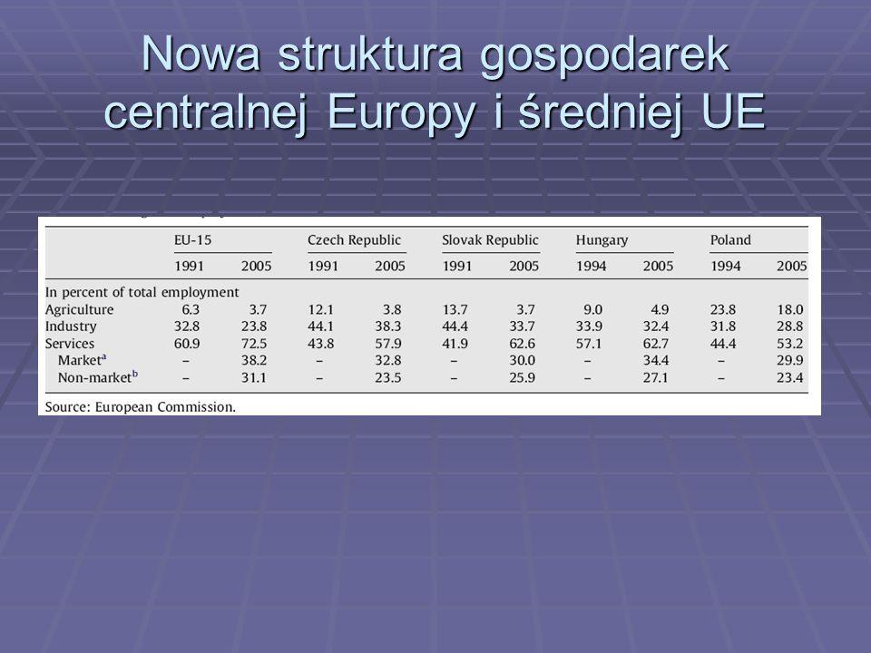 Nowa struktura gospodarek centralnej Europy i średniej UE